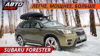 Subaru Forester 2019 — отличный семейный кроссовер