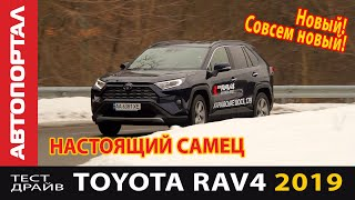 Первый тест-обзор Toyota RAV4 2019