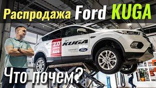 Обзор Ford Kuga Titanium за $24k